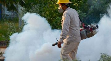 Ante nueva cepa de dengue, fumigaciones en Tabasco serán casa por casa