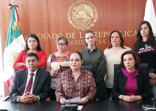 El Senado está comprometido en proteger a las mujeres de toda forma de violencia: Mónica Fernández