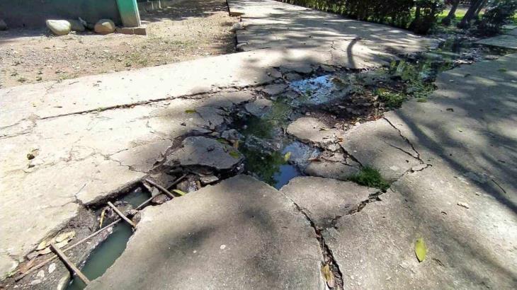 Enorme fuga de aguas negras recorre parte del parque Tomás Garrido
