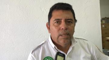 Reporta Ángeles Verdes atención diaria de 12 servicios desde que inició la Jornada Nacional de sana distancia