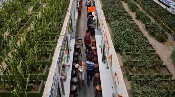 Anuncian el cierre del 50% de los accesos del mercado Pino Suárez.