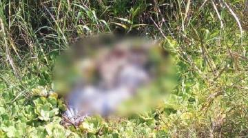 Localizan en estado de descomposición a cuerpo humano en bolsas en Nacajuca