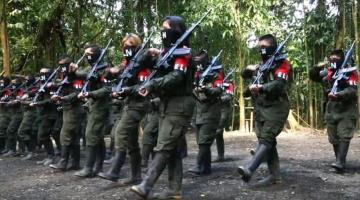 Declara Ejército de Liberación Nacional, cese al fuego en Colombia ante Covid-19