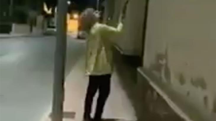 Exhiben a mujer por destrozar a escobazos más de 50 nidos de golondrinas en España