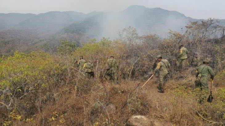 Incendios en 10 estados del país consumen más de 20 mil hectáreas de vegetación: SEDENA