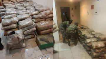 Aseguran SEMAR y GN 700 kilos de marihuana en Ensenada, Baja California
