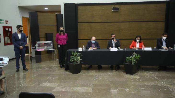 Covarrubias y Asociados, BGC y Parametría, realizarán las encuestas de MORENA para renovar la dirigencia