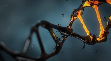 Descubren científicos de la Universidad de Pittsburg molécula para neutralizar el Covid