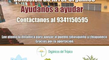 Productores Campechanos, organizan donación de 10 toneladas de arroz orgánico para damnificados de Tabasco y Chiapas