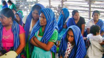 Acumula Tabasco 444 casos positivos de COVID-19 en población indígena y 51 decesos: INPI