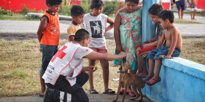 Más de 125 mil toneladas de ayuda humanitaria ha entregado la Cruz Roja Mexicana en Tabasco