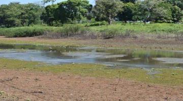 En 2020 cerca del 80% del territorio nacional se afectó por la sequía: CONAGUA